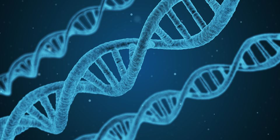 How to turn on your good genes?, How to Turn on Your Good Genes?